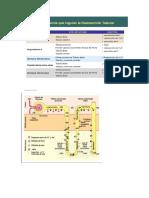 seminario funcion glomerular y tubular.docx