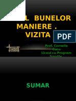 codul_bunelor_maniere.vizita.ppsx