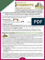 Carcassonne Extensia 8 Cetati Poduri Si Bazaruri(Full Permission)