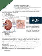 Anatomi & Fisiologi Saluran Kemih dan Ureterolithiasis