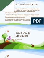 Programa Pdp