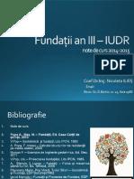 c1 - Fundații an III -Iudr