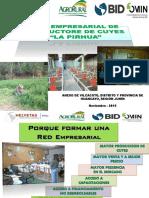 Agrorural cuy.pdf