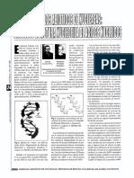 ModelosAbioticos de Nucleasas