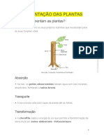 Trocas Nutricionais e Reprodução Nas Plantas_resumo_ciências 6º Ano