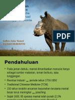 Sepuluh Bagian Tubuh Spesies Anggota Kelas Mammalia