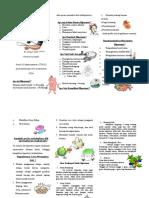 Leaflet Hipertensi FERINA