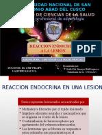 reaccion endocrina