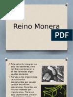 Monera y Protista
