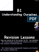 b1 revision