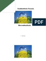 Trabalho de Quimica (Combustiveis Fosseis e Biocombustiveis)