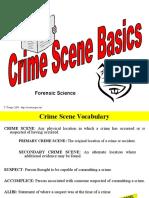 crime scene basics