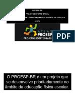 Apresentaçao PROEXT 2013