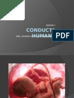 Sesión-1-Conducta-Humana.pptx
