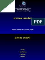 16371236 Sistema Urinario