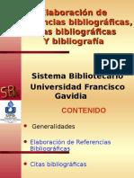 Referencias Bibliograficas 09-02-07