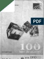 100_idei_afaceri