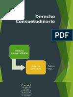 Derecho-Consuetudinario (1).pptx