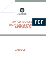Clase 21. Hongos y microalgas.pdf