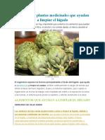 Alimentos y plantas medicinales que ayudan a limpiar el hígado.docx