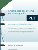 Embriología Del Sistema Estomatognático