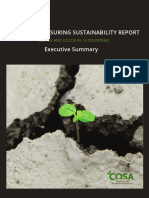 The COSA Measuring Sustainability Report Executive Summary