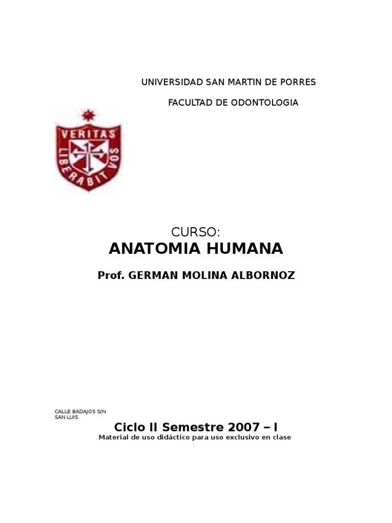 Lujo Agujeros De La Anatomía Humana Y Fisiología Edición 11 ...