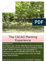 The CACAO Experience in Panay