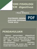 Anfis Sistem Pencernaan.pptx