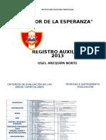 Registro Auxiliar 2013 Señor de La Esperanza