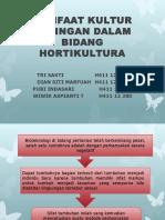Manfaat Kultur Jaringan Dalam Bidang Hortikultura