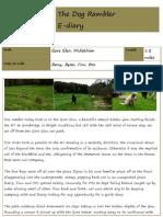 The Dog Rambler e-diary 14 May 2010