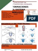 Sist. Nervioso (1)