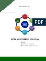 M Los Sistemas Integrados de Gestión - L.pdf