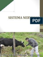Patología del Sistema Nervioso - Medicina Veterinaria