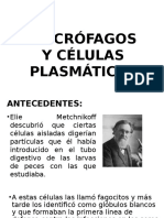Macrofagos y Celulas Plasmaticas