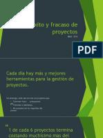5 Éxito y Fracaso de Proyectos