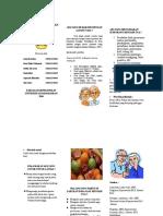 Leaflet Lansia (konsep lansia)