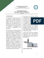 cromatografia de gases