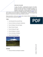 Principales Bosques Del Ecuador