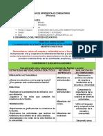 EJEMPLOS-DE-PLANES-DE-AULA-2013-1.doc