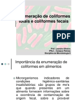 118573-aula_coliformes.pdf