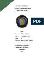 Laporan Praktikum Identifikasi Gulma