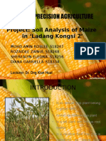 Maize project Slides.pptx