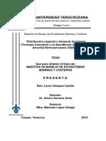 Laura-vazquez-Tesis.pdf