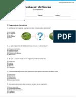 GP4_ecosistemas.pdf