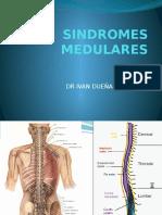 5. Síndromes Medulares Sjb