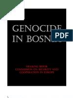Genocide in Bosnia-Herzegovina (Bosnian Genocide)