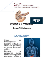 Duodeno y Pancreas Usmp 2016
