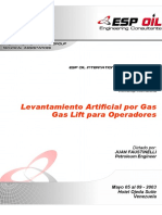 MANUAL GAS LIFT ESP OIL.pdf